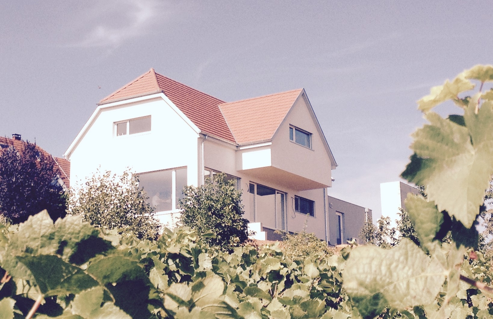 constructeur_haut-maison-rhin
